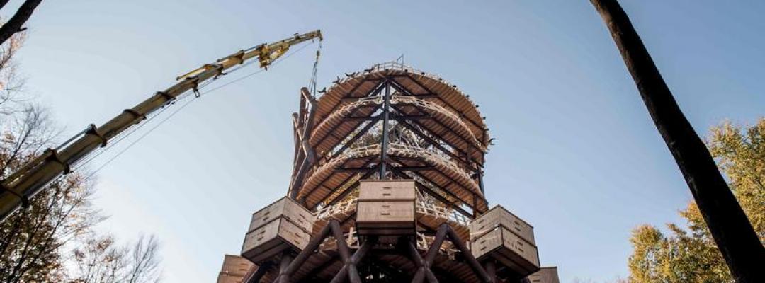 Turnul de lemn din milocul pădurii