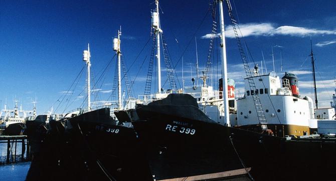 Vapoare de pescuit