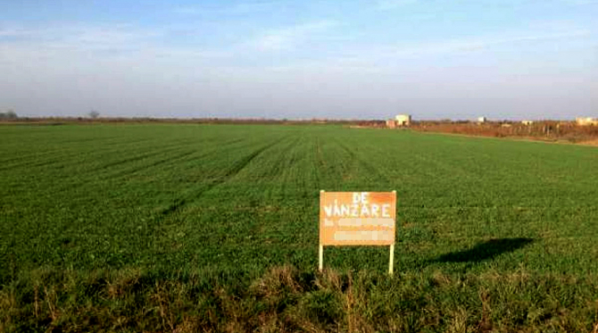 Gradinarii vor ca terenurile sa fie cultivate cu soiuri romanesti