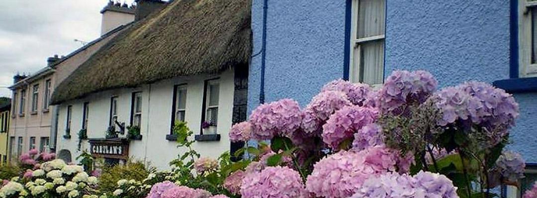Comitatul Devon, Marea Britanie