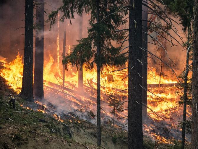 Incendiile au provocat o poluare masivă a aerului