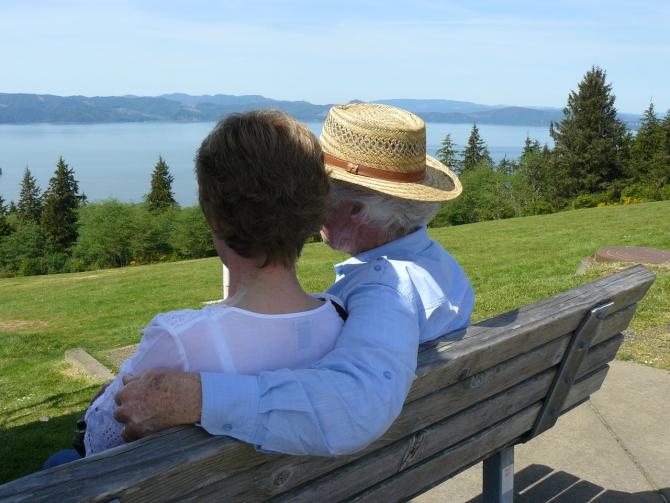Decizie privind pensiile