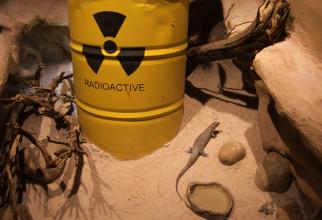 Gaz radioactiv scăpat dintr-un reactor nuclear, în China. O companie franceză a cerut ajutor SUA
