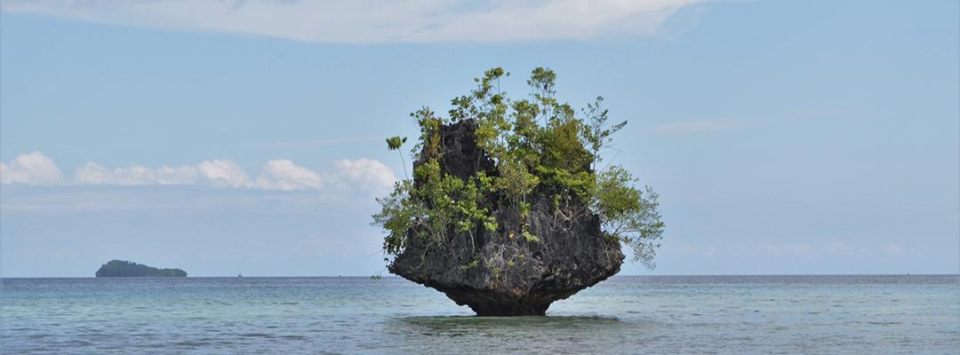 Arhipelagul Raja Ampat, Indonezia