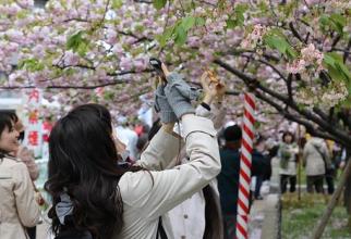 Japonezii sunt îngroziți de ce îi așteaptă