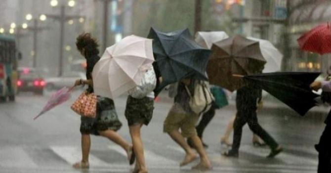 Va ploua mult, spun meteorologii