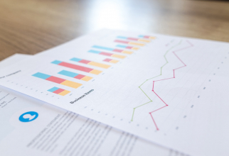 România are nevoie de experţi în accesarea şi evaluarea datelor, o nouă profesie pe piaţa muncii.