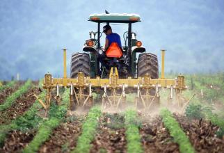 Tinerii fermieri vor beneficia în acest an, în premieră, de terenuri concesionate de la Agenţia Domeniile Statului în suprafaţă de 50 de hectare