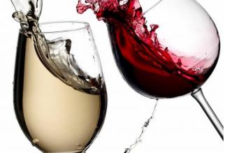 Ghidul vinurilor alese