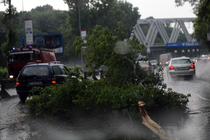 Furtuna in București