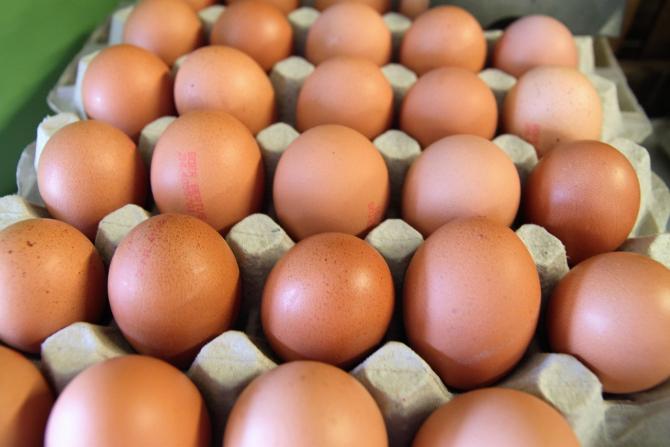 Doar 13% din ouă provin de la găini crescute în sistem ecologic!