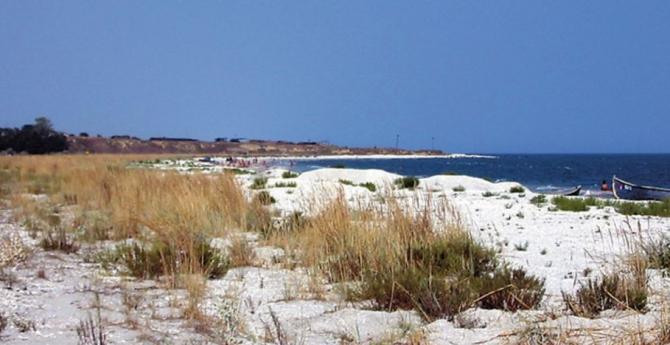 Plajă din Rezervaţia Biosferei Delta Dunării