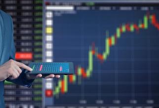 Vedetă a fost indicele pe dividende