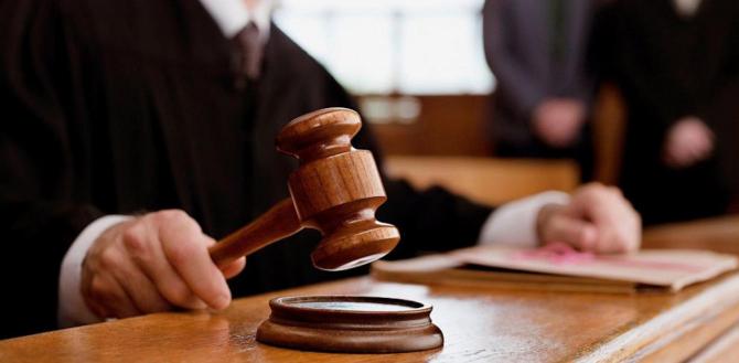 Decizia tribunalului
