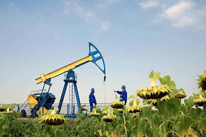 Acțiunile OMV Petrom, printre cele mai tranzacționate