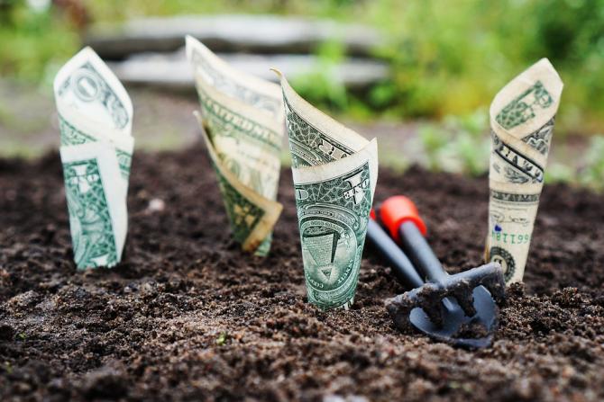 Finanțele înființează un nou tip de bancă națională