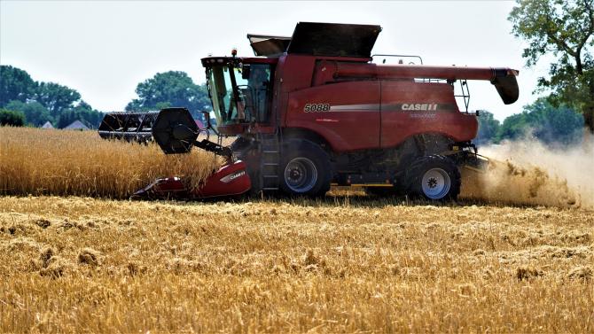Germanii sunt în căutarea unor noi piețe de desfacere pentru grâu