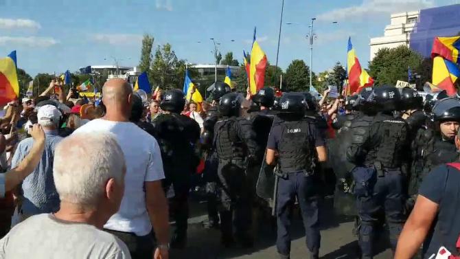 Protestul diasporei în Piața Victoriei