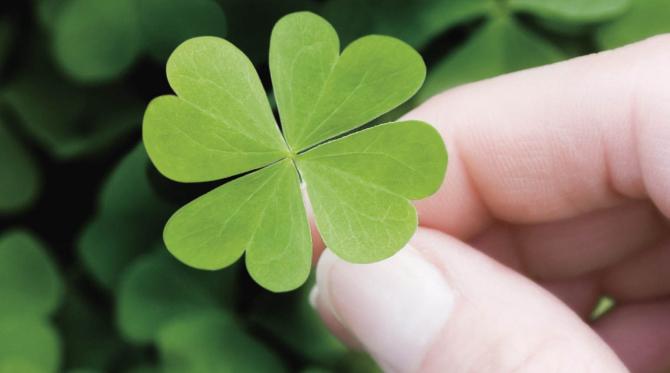 Cum se spune, norocul depinde și de noi