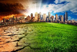 Mai multe companii din lume se alătură Grevei Mondiale pentru Climă