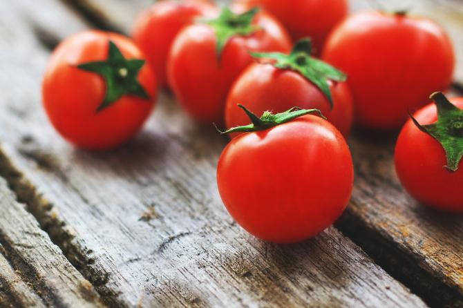 Programul de susținere a tomatelor