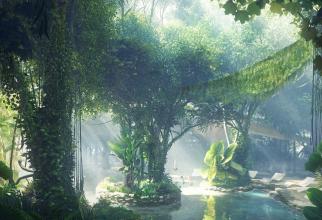 Va fi prima pădure tropicală din Orientul Mijlociu