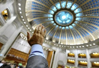 În Parlamentul României au existat și există unele personaje destul de exotice