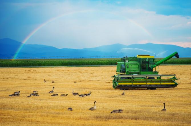 tinerii fermieri vor beneficia în acest an, în premieră, de terenuri concesionate