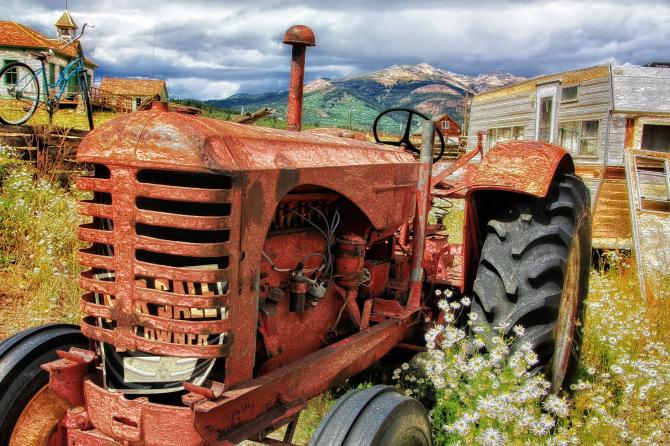 Afacerile în mediul rural sunt tot mai căutate
