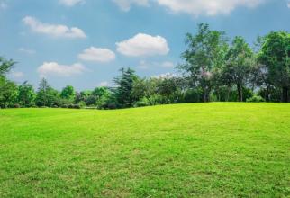 Dacă vrei să trăiești la țară, unde e liniște și aer curat, atunci ar fi bine să știi că îți poți construi și o afacere de succes