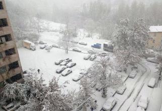 ANM: Cod GALBEN de NINSORI. în intervalul 06 aprilie, ora 23:00 - 07aprilie, ora 18:00, în sudul Banatului, sudul și estul Transilvaniei, precum și în zona Carpaților Meridionali și Orientali, va ninge.