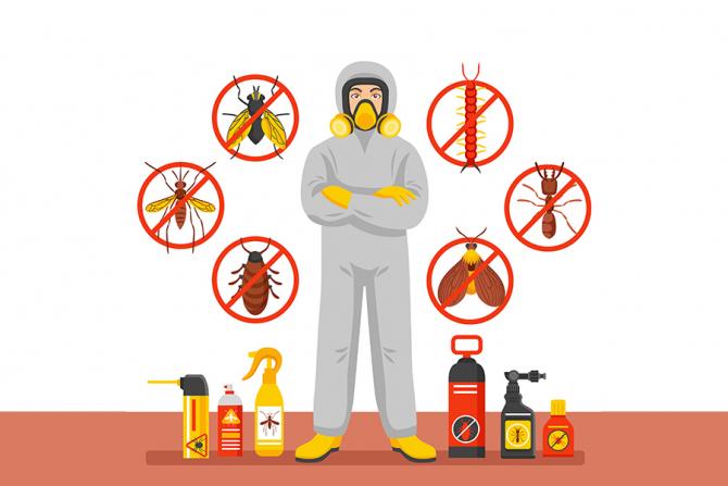 Noi reglementări pentru firmele de deratizare. / Foto: macrovector / freepik.com