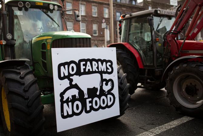 Fermierii iralndezi cer revizuirea prețurilor de bază