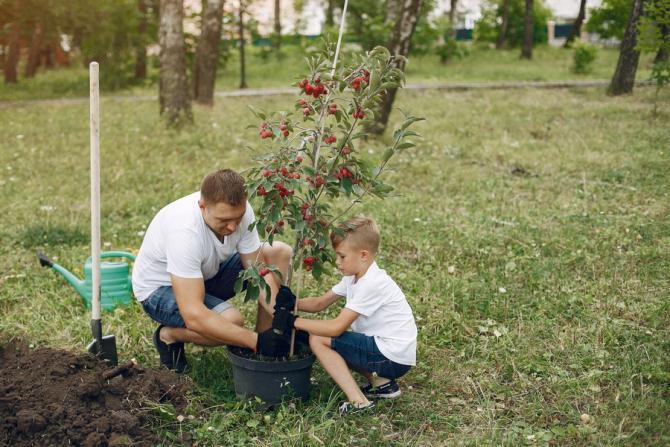 O treime (33%) din numărul total de ferme din Uniunea Europeană (UE) se află în România
