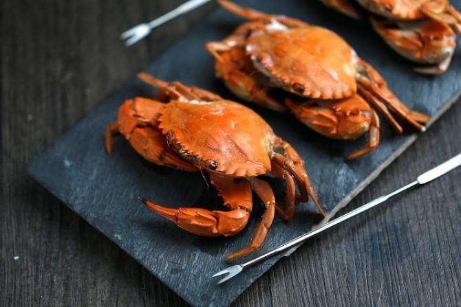 Un crab de zăpadă din Japonia