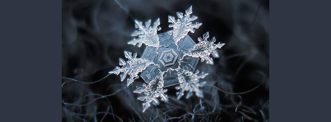 Fulg de zăpadă