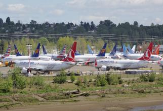 Avioane Boeing 737 Max, ținute la sol din cauza problemelor tehnice