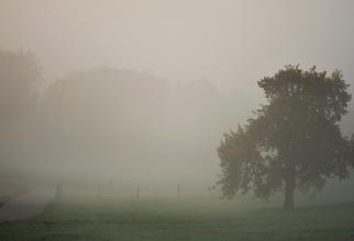 Administraţia Naţională de Meteorologie a emis, sâmbătă dimineaţa, mai multe atenţionări Cod galben de ceaţă densă
