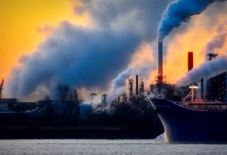 O formă de luptă împotriva schimbărilor climatice