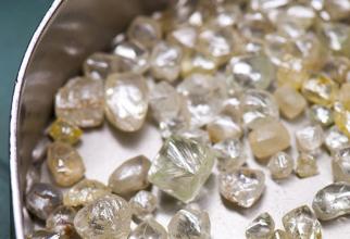 Piața diamantelor nu-și va reveni anul viitor
