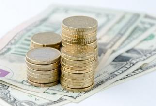 Moneda națională s-a înclinat în fața dolarului