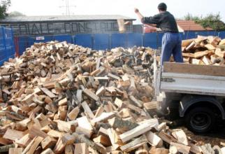 Industria lemnului şi industria mobilei sunt într-o stare de criză
