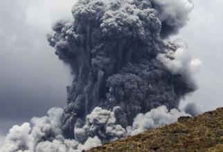 Noua Zeelandă a comandat 119 metri pătraţi de piele din America pentru victimele arse în urma erupţiei vulcanului
