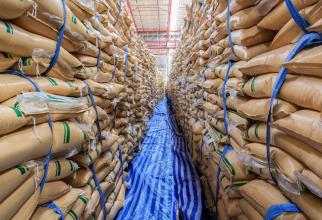 Americanii vor fi nevoiți să importe o cantitate uriașă de zahăr