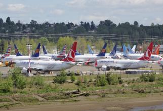 Avioanele Boeing 737 MAX nu au mai avut voie să zboare iar producția acestora a fost oprită