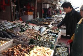 Piața de pește și Wuhan