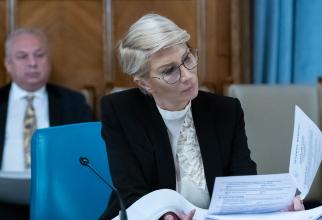 Vicepremierul Raluca Turcan a explicat care sunt intențiile Executivului