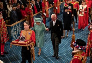 Regina Elisabeta a II-a, în vârstă de 93 de ani, își formulează cererea cu câteva zile înaintea primei apariții publice a Prințului Harry
