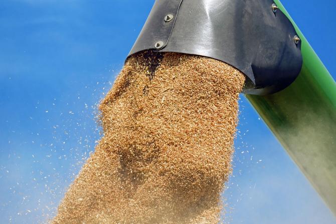 România exportă o mare cantitate de cereale