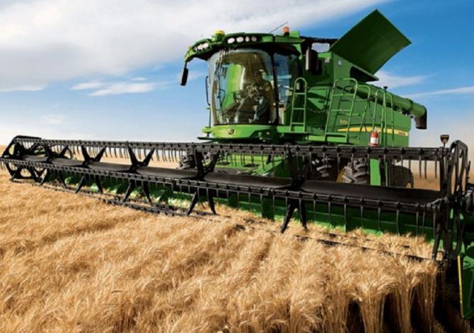 Exporturile de grâu din Ucraina vor scădea cu 14%